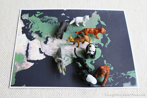 Animals on Satellite Map of Asia