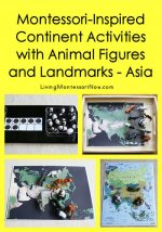 Montessori-Inspired Continent Activities with Animal Figures and Landmarks – Asia