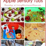 30+ Apple Sensory Tubs