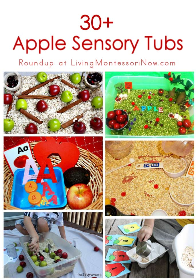 30+ Apple Sensory Tubs (Sensory Bins)