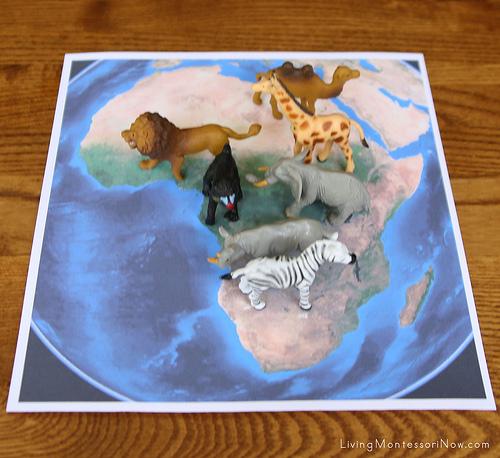 Animals on Satellite Map of Africa