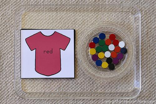 Shirt Color Tray