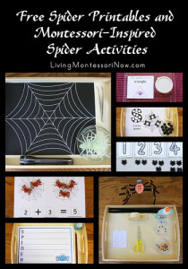 Free Spider Printables and Montessori-Inspired Spider Activities