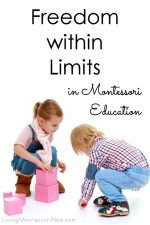 Freedom within Limits in Montessori Education