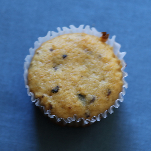 Gluten Free Peanut Butter Oat Bran Muffin Focusing on Healthy, Gluten Free Foods for My Family