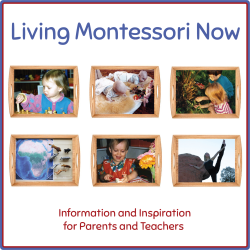 Living Montessori Now Button