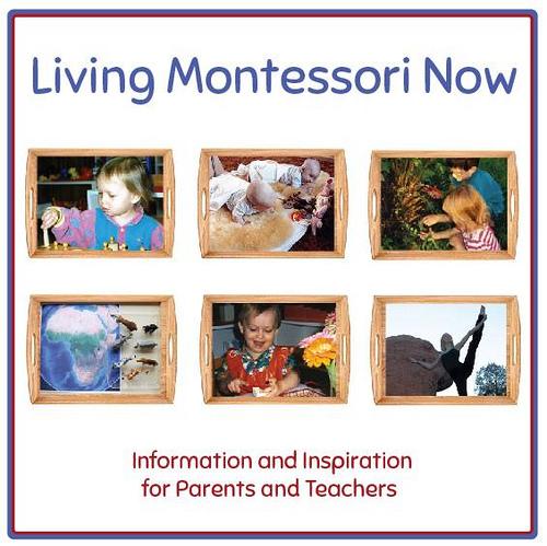 Living Montessori Now Button