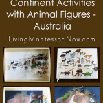Montessori-Inspired Continent Activities with Animal Figures – Australia