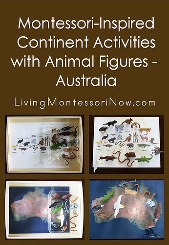 Montessori-Inspired Continent Activities with Animal Figures - Australia