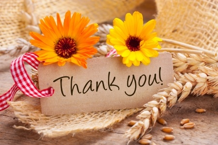 Top 10s and Thank You's for November 2013