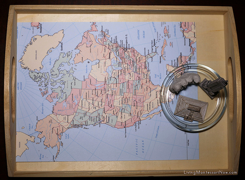 Landmarks of North America Tray