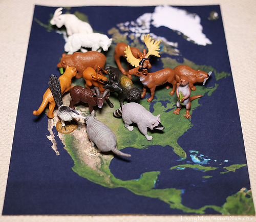 Animals on Satellite Map of North America