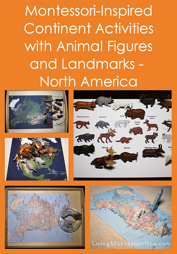 Montessori-Inspired Continent Activities with Animal Figures and Landmarks - North America