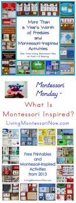 Montessori Monday – What Is Montessori Inspired?