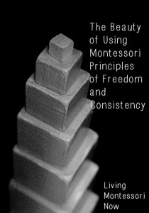 The Beauty of Using Montessori Principles of Freedom and Consistency