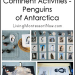 Montessori-Inspired Continent Activities – Penguins of Antarctica