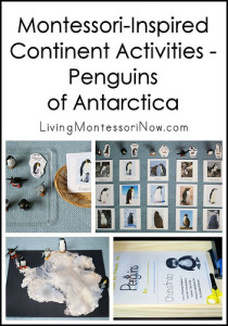 Montessori-Inspired Continent Activities - Penguins of Antarctica