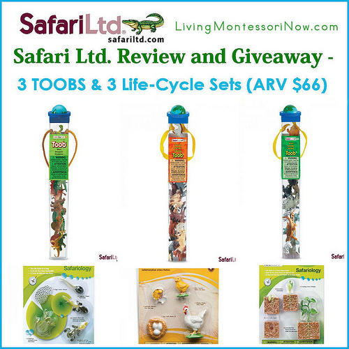Safari Ltd. Review and Giveaway (ARV $66 Worth of Products)