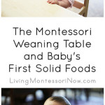 The Montessori Weaning Table and Baby's First Solid Foods