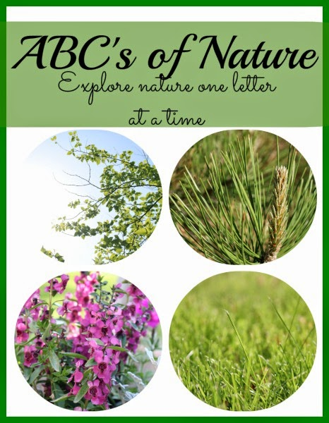 ABC's of Nature