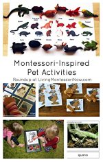 Montessori Monday – Montessori-Inspired Pet Activities