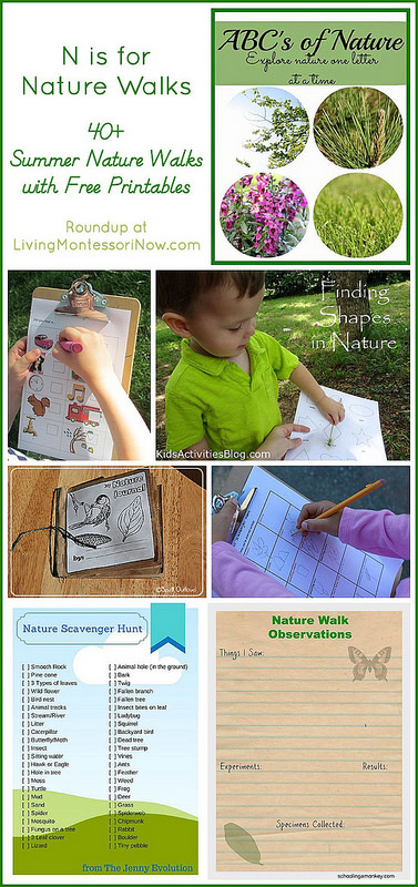 N is for Nature Walks with Free Printables
