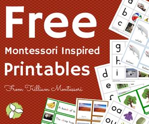 Free Montessori Inspired Printables from Trillium Montessori