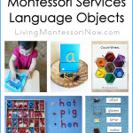 Activities Using Montessori Services Language Objects