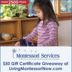 Montessori Services $50 Gift Certificate Giveaway