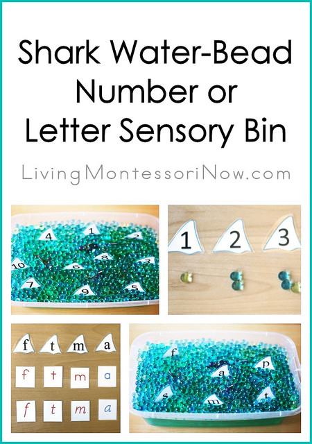 Montessori Monday – Shark Water-Bead Number or Letter Sensory Bin