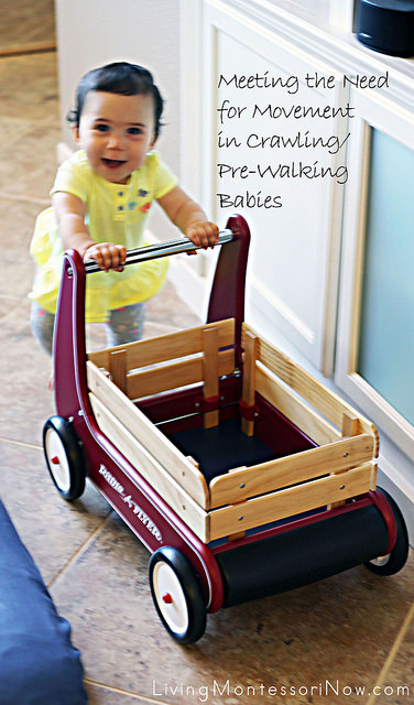 Meeting the Need for Movement in Crawling-Pre-Walking Babies
