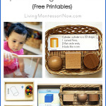 Montessori Monday – Montessori-Inspired Sphere, Cube, Cylinder Activities {Free Printables}