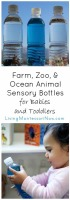 Farm, Zoo, and Ocean Animal Sensory Bottles for Babies and Toddlers