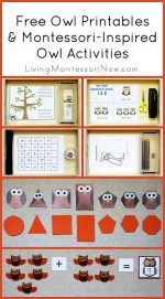 Free Owl Printables and Montessori-Inspired Owl Activities