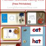 Montessori Monday – Montessori-Inspired Phonics Activities Using Dots {Free Printables}