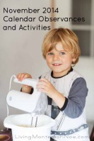 November 2013 Calendar Observances and Activities