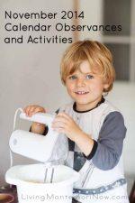 November 2014 Calendar Observances and Activities