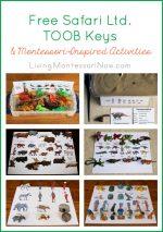 Montessori Monday – Free Safari Ltd. TOOB Keys and Activities