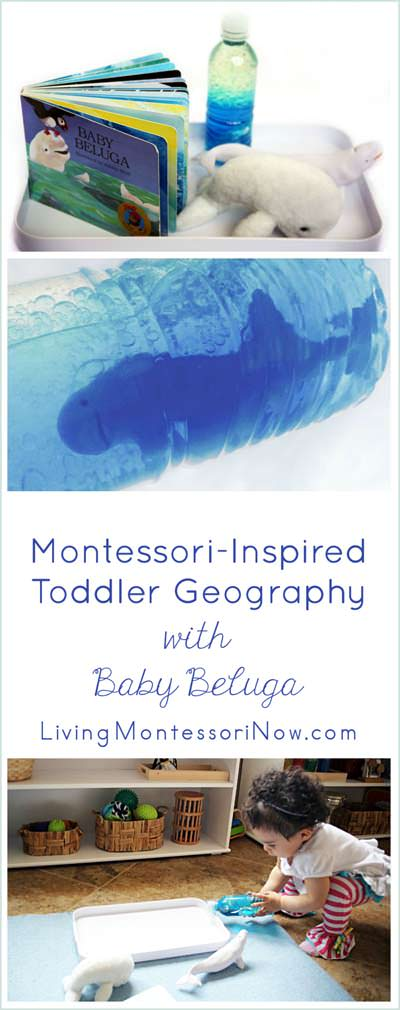 Montessori-Inspired Toddler Geography with Baby Beluga