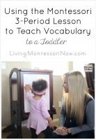 Using the Montessori 3-Period Lesson to Teach Vocabulary to a Toddler