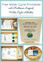 Free Water Cycle Printables and Montessori-Inspired Water Cycle Activities