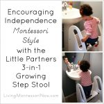 Little Partners 3-in-1 Growing Step Stool Review