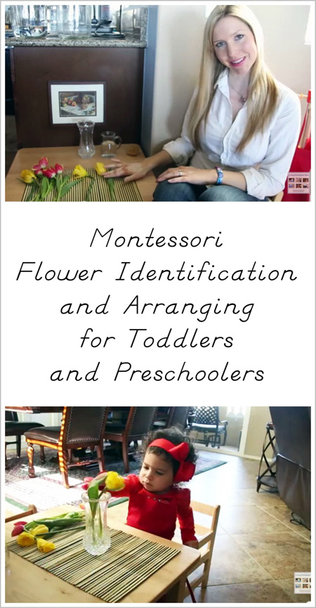 Montessori Flower Identification and Arranging for Toddlers and Preschoolers
