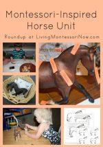 Montessori-Inspired Horse Unit