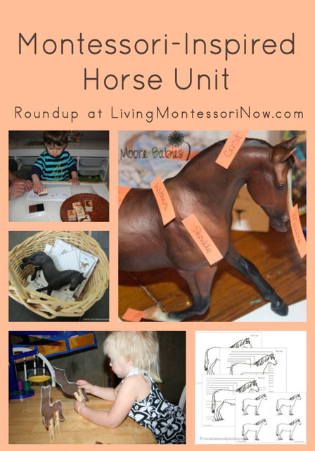 Montessori-Inspired Horse Unit