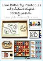Free Butterfly Printables and Montessori-Inspired Butterfly Activities
