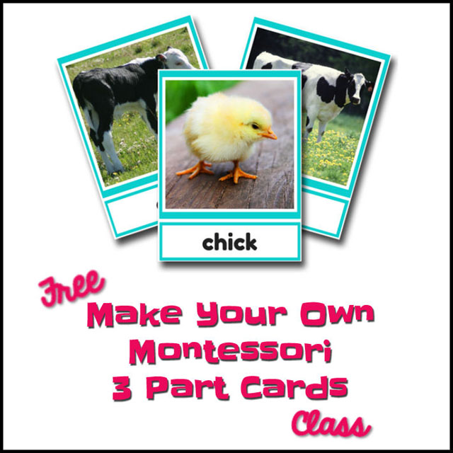 Montessori Monday – Free Make Your Own Montessori 3-Part Cards Class