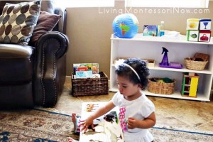 Montessori Book Baskets