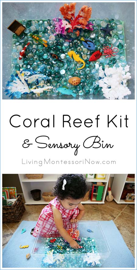 Coral Reef Kit and Sensory Bin