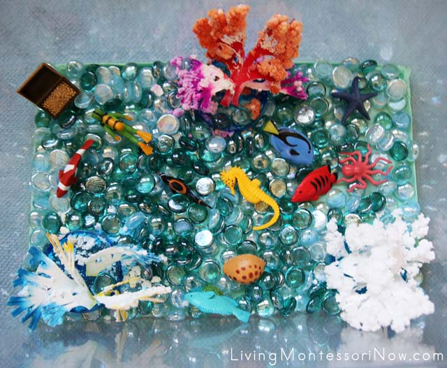 Coral reef sensory bin living montessori now save sciox Image collections